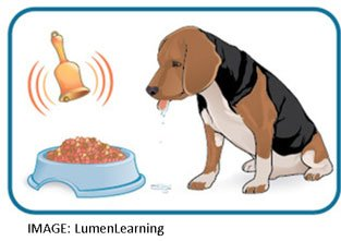 Pavlov's Dog Drooling
